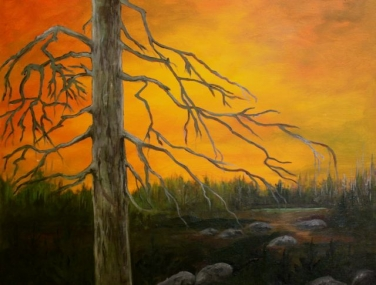 Squires Barren Landscape (16 x 20 oil)